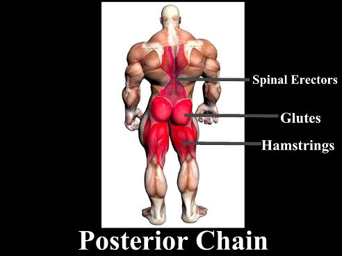 posteriorchainchart1